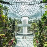 Collected Rainwater Powers The World S Tallest Indoor Waterfall At