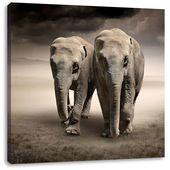 LeinwandbildZwei stolze Elefanten in Steppe East Urban Home Größe: 60 cm H x 60 cm B