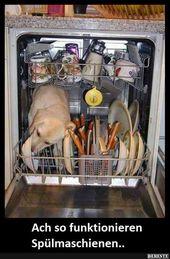 Oh, so funktionieren Geschirrspülmaschinen ..   Lustige Bilder, Sprüche, Witze, Ech …   – Tiere