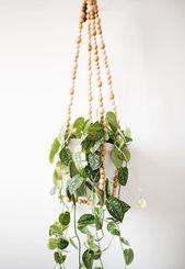5 Fresh DIY Ways to Hang Plants Indoors