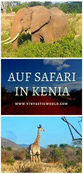 Kenia: Safari im Tsavo East Nationalpark – The Big Five – * Reisen – Tipps – Hotels * Gruppenbord