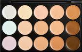 15 Color Concealer Palette – Products