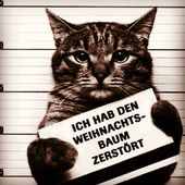 Hier bei uns von EBENBLATT gibt's die coolsten und lustigsten Katzen Shirts für