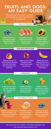 Obst und Hunde: Eine einfache Anleitung. Stellen Sie sicher, dass Sie …