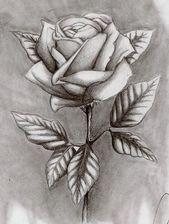 Wie zeichnet man eine schöne (detaillierte) Rose? – Christina Calbi, #beautiful #beautylifedrawing # …