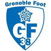 Gf38 Officiel Grenoble Football Team Logos Football Logo
