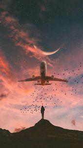 Solche schönen und so schönen Vogelflüge erinne…