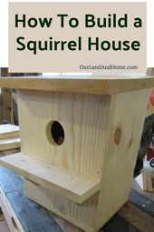 How To Build A Squirrel House Our Land And Home Squirrel Home Bird House Kits Bird Houses Diy