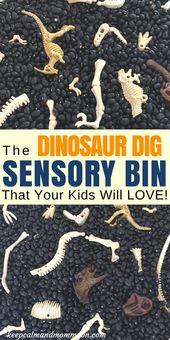 Dinosaur Dig Sensory Bin!