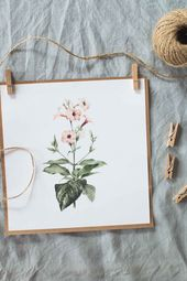 2 free watercolour flower printables