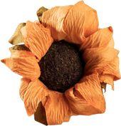 Download Sticker Sunflower Yellow Aesthetic Vintage Arthoe Flower Vintage Transparent Flower Photo Png Pn Aesthetic Vintage Flower Aesthetic Yellow Aesthetic