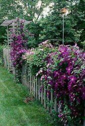 Hausfassade Pflanzen Eingang 32 Beste Ideen
