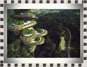 Zukünftiger Baumturm im Wald G