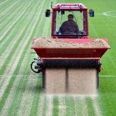 Rasen Rasen: Gebrauch und professionelle Anleitung – garten