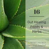 16 Gut Healing Foods and Herbs — Mandi Palmer, Food & Lifestyle Success Coach