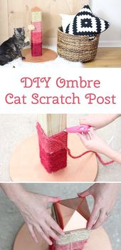 Your cat will love this DIY ombre scratching post. The color options are … #this #diyforpets #color options #cat