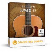 Laden Sie Orangenbaum-Beispiele – Evolution Jumbo 12 KONTAKT Library herunter   – Kontakt Library