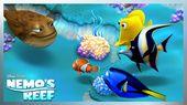 Nemo y su padre Marlin necesitan ayuda para descubrir cómo construir la casa …   – Buscando a Nemo