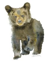 Black Bear Cub Watercolor 11×14 Giclee Print Fine Art Reproduction Forest Animal