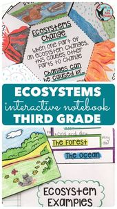 Love using science interactive notebooks in your third grade classroom? This Ecosystems Interactive …