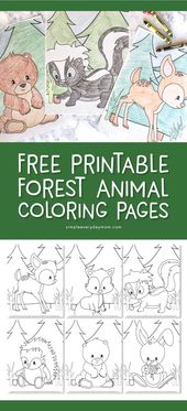 Free Printable Woodland Animal Coloring Pages For Kids