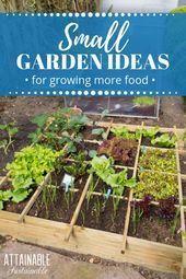 Home Vegetable Garden Ideas Small Spaces Home Vegetable Garden