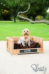 DIY $ 12 Cama para mascotas!   – pallets