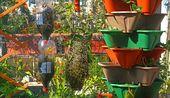 Erste Schritte in der vertikalen Gartenarbeit – Hobbyfarmen – Vertical gardening