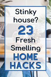 Cómo deshacerte de tu Stinky House (¡de una vez por todas!)