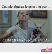 Memes, 🤖, and Meta: Cuando alguien le grita a tu perro  CON MI HUO NO TE META…