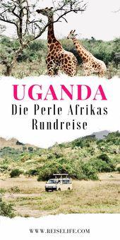 Wie gefährlich ist ein Uganda Urlaub? Ein Rundreise Erfahrungsbericht! ↠REISELIFE↞ – Afrika ~ Reisen – Tipps