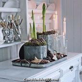 Great # month of the winter beginning # solid month # Amaryllis # light bulbs # candles # candles # bed …