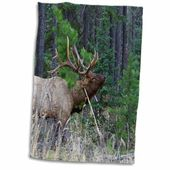 East Urban Home Corinne Rocky Mountain Elk Hand Towel