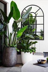 10 ausgezeichnete Ideen, um Zimmerpflanzen im Innenbereich anzuzeigen – – Bepflanzung ♡ Wohnklamotte