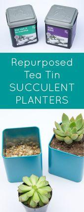 DIY Tin Succulent Planters