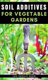 5 Weird Garden Soil supplements for a healthier vegetable garden #one #er   – Raised vegetable gardens