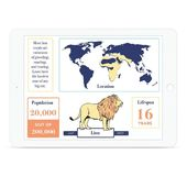 iPad Infografik Prototyp für eine Big Cats Ausstellung im Museum of Natural Hi …