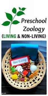 Montessori Zoology – Living & Non-Living – Carrots Are Orange