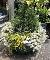 58 Straightforward Container Gardening Flowers Concepts