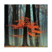 Produktdetails Orangenbaum Kunstdruck auf Leinwand   – Art