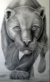 black panther drawing – Google-søk – Panther