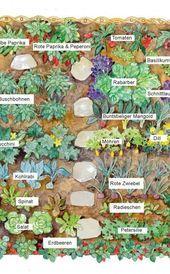 Gemüsegarten: Große Ernte auf kleiner Fläche – # EIN #Garten # Fläche # Ernte …   – Garten Ideen