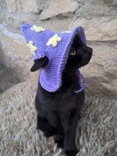 Wizard cat cat fuente: catsinhats.store – #cat #catsinhatsstore #Source #Wizard   – Raben