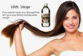 Top 31 wirksame und natürliche Hausmittel für beschädigte Haare reparieren die Schönheit der Frau