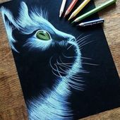 Night Cat  Gorgeous drawing on black paper by @shining_star_draws  by justartspiration