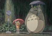 20289f8657fca07275c811da5c281af5  catwoman totoro - Totoro
