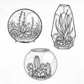 #Zeichnung #Skizze #Tattoo #Bild Sukkulente, Kunst, Idee, Illustration – Foto