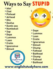 27 Methods to Say STUPID in English – English Examine Right here