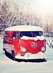 Volkswagen Bus Vanagon Double Door Panel