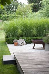 hoge grassen, gras, kiezel, houten deck